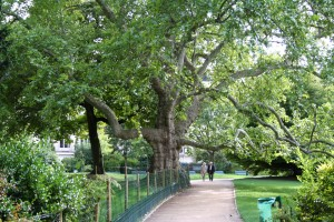 Parc Monceau, a 20-acred park in Paris, France. McMillan has drawn comparisons to the urban park.